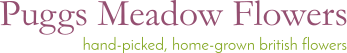 Puggs Meadow Flowers Logo