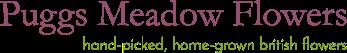 Puggs Meadow Flowers Logo